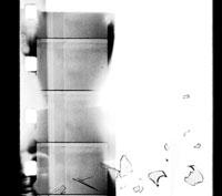Calmando Qual - [silent]